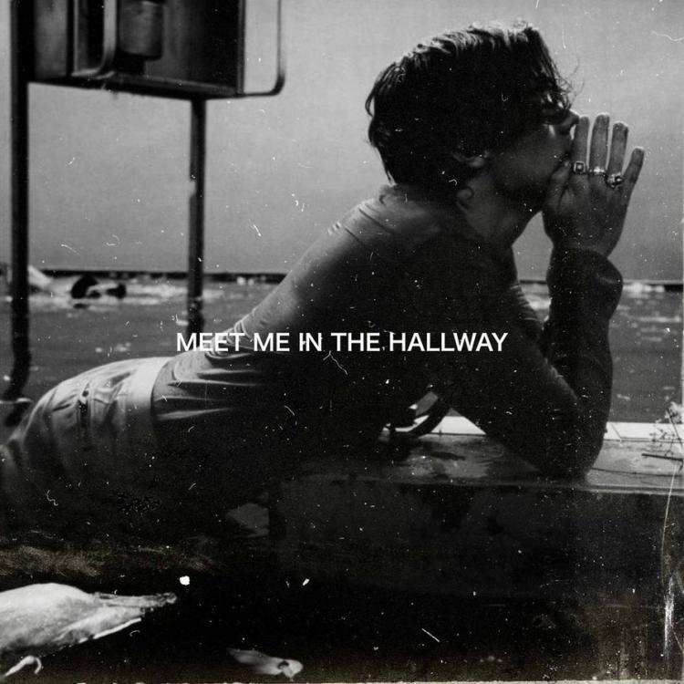 harry_styles___meet_me_in_the_hallway_by_summertimebadwi-dbk4bkb.jpg