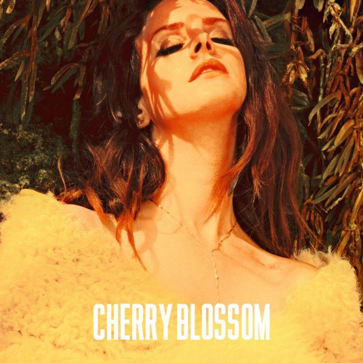 lana-del-rey-cherry-blossom-single-2013.jpg