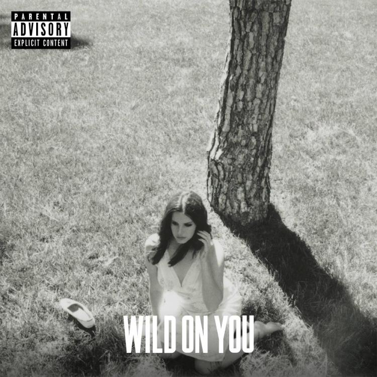 lana-del-rey-wild-on-you-single.jpg